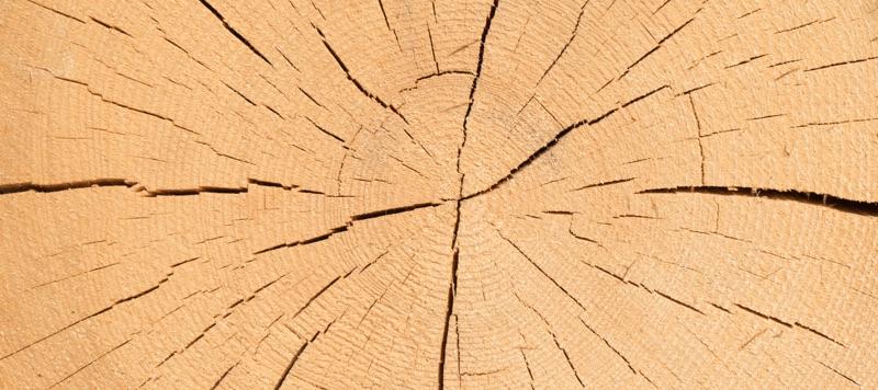 Transportkisten aus Holz.